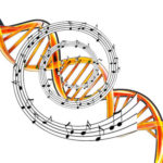 Oddziaływanie muzyki na poziomie komórkowym
